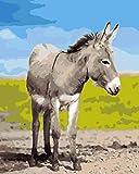 Pintura por números Burro Animal DIY Pintura al óleo para Adultos Niños Principiante con Pinceles y Pigmento acrílico Arte Decoración del hogar 16x20 Sin Marco