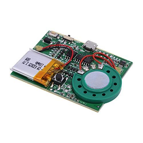 Zerone Re-recordable USB Musik Ton Sprachaufnahme Spieler Chip Modul 1W Aufladbarer Lithium Batterie mit 480 Sekunden Aufnahme für DIY Karten/Spielwaren (Taste kontrollieren)