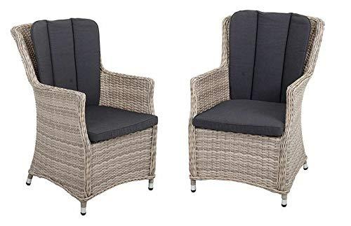 ADHW 2er Set Armsessel Sessel Gartenstuhl Stuhl mit geschwungener Rückenlehne