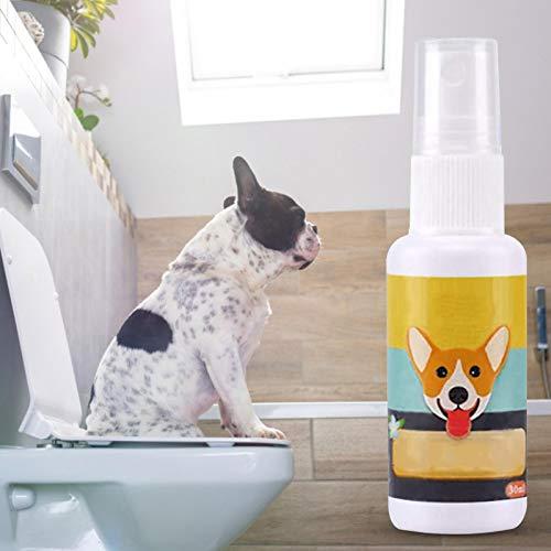 Banane Paquete de 5 aerosoles para perros, aroma atractivo que ayuda a entrenar cachorros y perros donde ir al orinal, formulado para uso en interiores y exteriores
