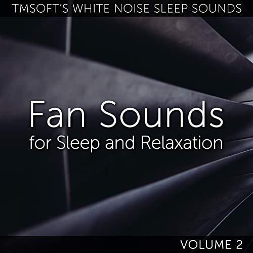 Small Oscillating Dyson Bladeless Fan Sound