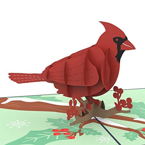 Unipop Cards Cardinal Bird Pop Up Card, 3D Birthday Greeting Cards, Thank You Pop Up Greeting Card,...