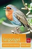 Singvögel: Heimische Arten erkennen