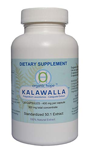 Kalawalla (Calaguala) with Polypodium Leucotomos for Immune System Support, Highest Potency 50:1 Extract 400mg. (120 Veggie Caps)