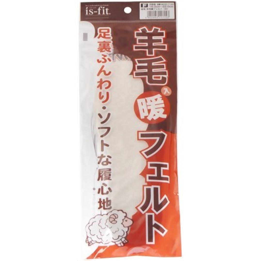 災難汚れるコロニーis-fit(イズフィット)  羊毛入り暖フェルト 子供用 16.0-22.0cm 白