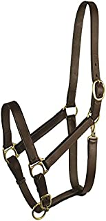 GATSBY LEATHER COMPANY 283460 Leather Halter Havanna Brown, Weanling