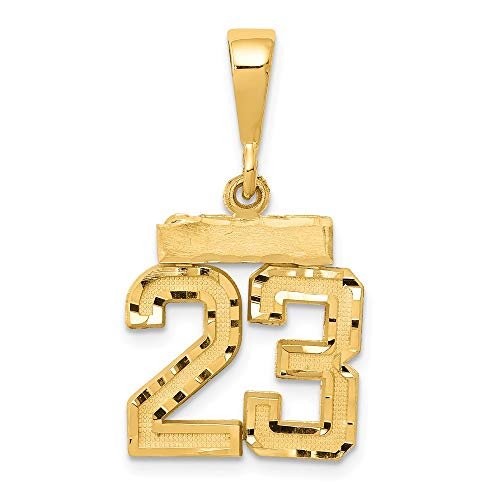 Solid 14k Yellow Gold Small Diamond-Cut Number 23 Pendant Charm