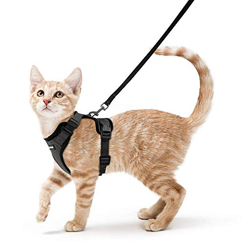 "rabbitgoo Cat Harness and Leash for Walking, Escape Proof Soft Adjustable Vest Harnesses for Cats, Easy Control Breathable Reflective Strips Jacket, Black, XS (Chest: Chest: 13.5""-16"")"