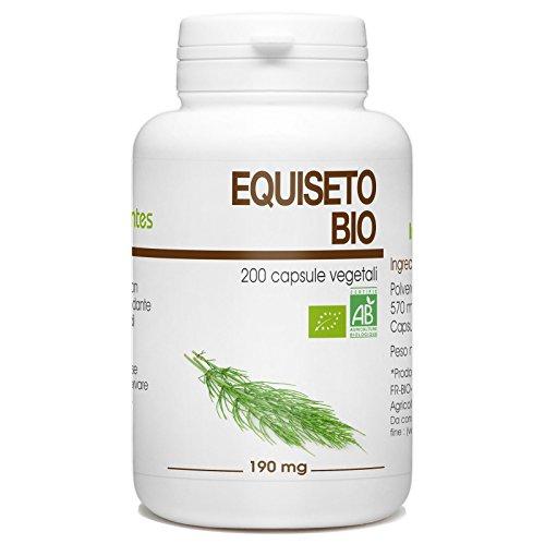 Equiseto Bio - Equisetum arvense - 190mg - 200 capsule vegetali
