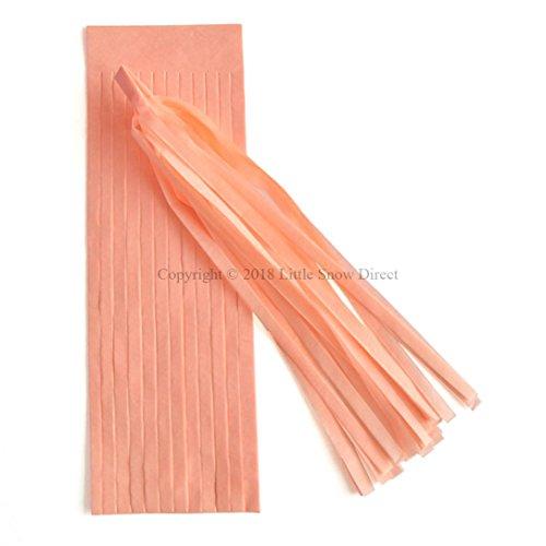 Little Snow Direct 5pcs Tassels Garland Tissue Paper Bunting Wedding Birthday Party Baby Shower - Peach