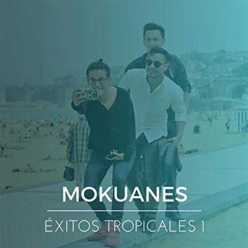 Éxitos Tropicales, Vol. 1