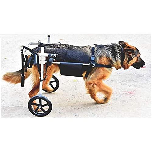 YUNDING Silla De Ruedas De Perro Ajustable Scooter De Perros Cochecito De Pierna Trasera Soportada Suelza para Perros Adecuado para Perros Medianos Y Grandes.(Color:1XL)