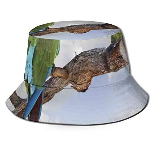 LLALUA Unisex zomer visser pet, twee papegaai Macaw op een tak pratende vogels slimme wezens van de natuur, reizen strand outdoor zon hoed