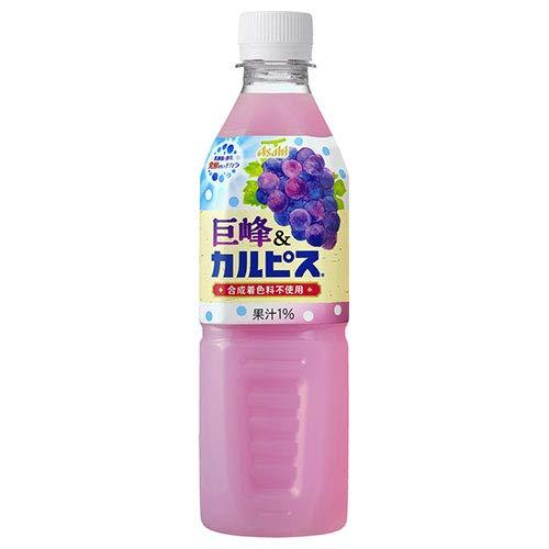 カルピス 巨峰&カルピス 500mlペットボトル×24本入×(2ケース)