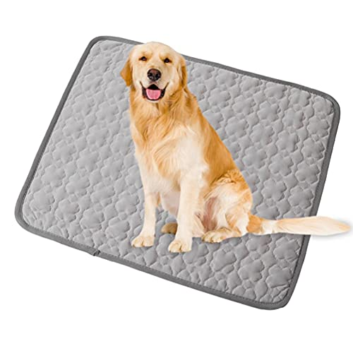 ONQ Qhome - Cuscino rinfrescante per cani, lavabile, per cani, per cani e gatti