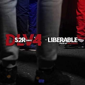 DLV #4 Libérable (prod by Waly Beats)
