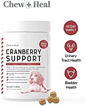 Chew + Heal UTI Treatment Cranberry Chews for Dogs - 120 Soft Chews - Supports Healthy Urinary Tract and Bladder Function - Corrects Imbalances - with Echinacea and Vitamin C