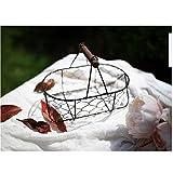 Qivor Canasta de Almacenamiento de Hierro Forjado Vintage Canasta de residuos de Malla de Alambre Tejido a Mano Canasta de Hierro, Negro