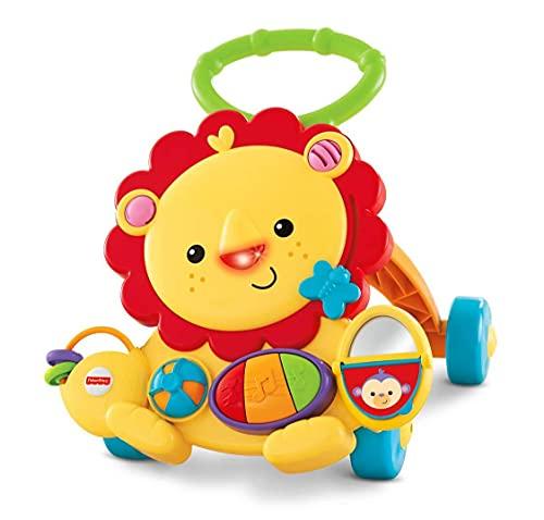 Fisher-Price Everything Baby Y9854 andador Multicolor - Andadores (6 mes(es), 3 año(s), Multicolor)