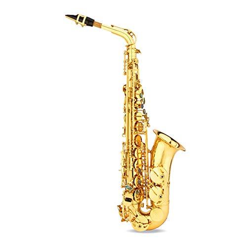 JenLn Professionelle Alto Eb Sax Saxophon Gold-Lack-Finish mit Fall, Schilf, Straps, Schmiermittel usw. (Color : Gold, Size : 66.5X25.9X12.2cm)