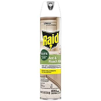 Raid Ant and Roach Killer Aerosol Spray with Essential Oils  1