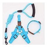 犬&猫実行するか、トレーニング首輪とハーネスのために犬の鎖ナイロンペットリーシュ (Color : Collar Harness SKB, Size : L 50 65cm chest)