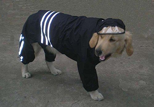 Manteau imperméable pour chien – Bande réfléchissante