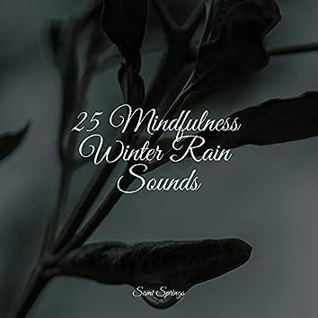 25 Mindfulness Winter Rain Sounds