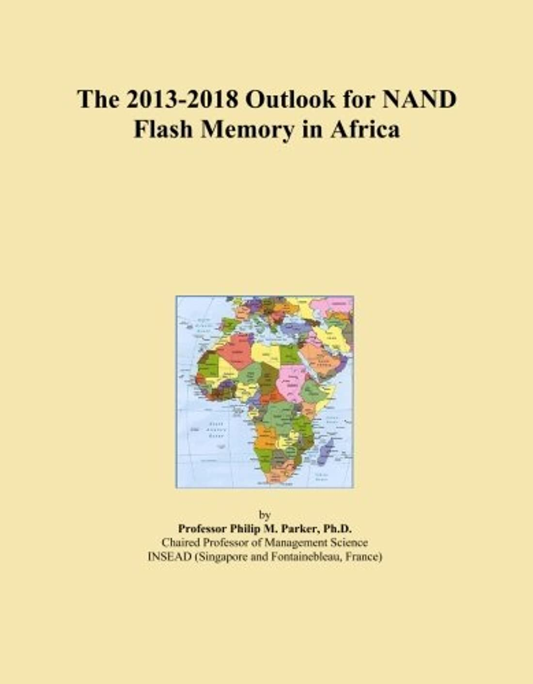 ビット南東黒The 2013-2018 Outlook for NAND Flash Memory in Africa
