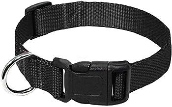 Best dog neck belt Reviews
