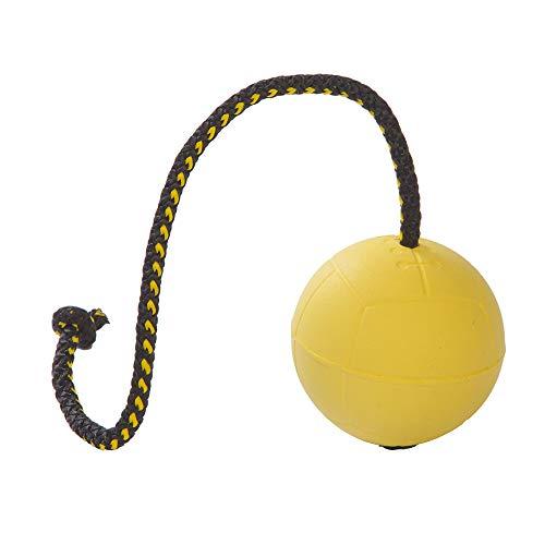 Dingo Gear Ball für Training # 70 mm auf Seil 30 cm schwimmed Ball weich Gummiball Farbe Gelb apport Spiel mit Hund S02703
