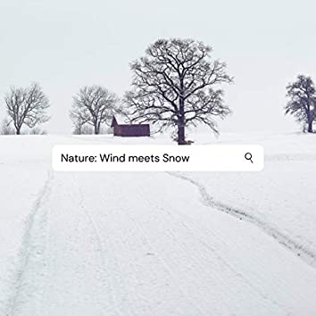 Nature: Wind Meets Snow