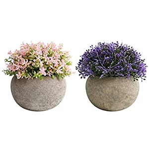THE BLOOM TIMES 2 PCS Small Fake Plants for Bathroom Home Farmhouse Decor, Mini Artificial Potted Flowers Plastic Faux Topiary Indoor Office Table Desk Shelf Decoration