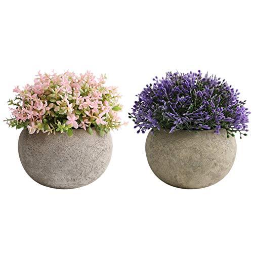 THE BLOOM TIMES 2 Stück kleine künstliche Mini-Topfpflanzen für den Innenbereich, für Zuhause, Bauernhaus, Badezimmer, Büro, Schreibtisch-Dekoration