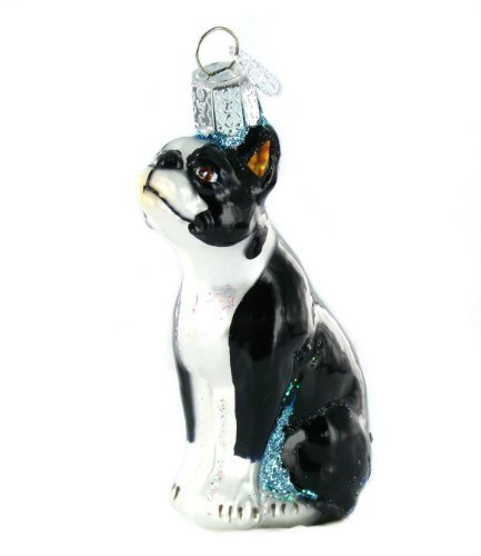 Old World Christmas Boston Terrier Glass Blown Ornament by Old World Christmas