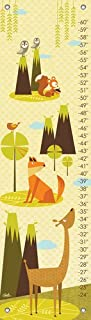 Oopsy Daisy Growth Charts Owl Be Seeing You On The Mountain by Carmen Mok, 12 by 42-Inch