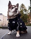 PONNMQ Ropa para Perros de Invierno Ropa para Perros de Moda Sudadera con Capucha Cazadora para Perros Ropa para Mascotas Camisa Bulldog francés a Prueba de Viento Pug Chihuahua, Black Dog Clohtes, L
