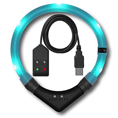 LEUCHTIE® Leuchthalsband Premium Easy Charge türkis Größe 45 I LED Halsband für Hunde I USB aufladbar I konstante Leuchtkraft I wasserdicht I extrem hell