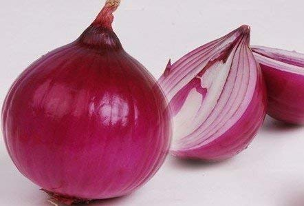 Vente chaude 20pcs Oignon Graines Allium Cepa Graines Bonsai Seed pour fruits et légumes Graines de bricolage jardin Livraison gratuite