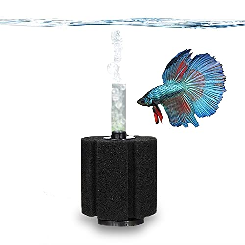 SunGrow Betta Sponge Filter, Works for Tropical Fish and Breeder Aquarium, Perfect for Fry and Small Fish, A Must-Have for Aquarium Hobbyist, Airline Tube Not Included, 1 Pack