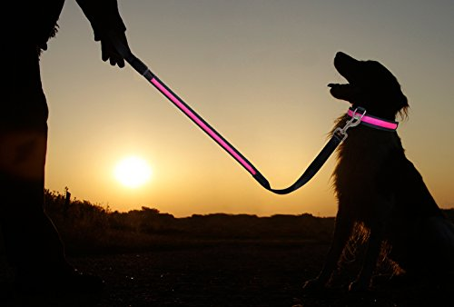 PRECORN LED Hunde-Leine Leuchtend Leuchtleine Sicherheitsleine Leine Hund Hundeleine Halsband pink