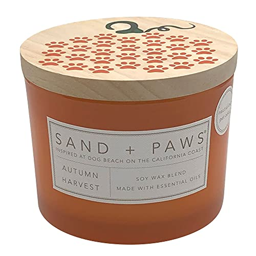 Sand + Paws Scented Candles | Autumn Harvest | Soy Blend | Lead-Free Wicks | 12 oz.