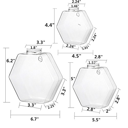 Set of 5 Hexagon Wall Glass Vase for Water Plants Indoor Wall Mounted Glass Planters for Air Plants Succulents Garden Decoration for New House Great for Hallway or Living Room5 pcs mixed sizes