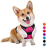BARKBAY No Pull Dog Harness Large Step in Reflective Dog Harness with Front Clip and Easy Control Handle for Walking Training Running(Pink,M)