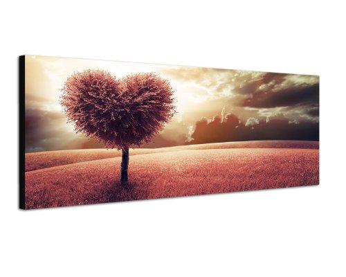 Paul Sinus Art Panoramabild auf Leinwand und Keilrahmen 120x40cm Wiese Baum Herz abstrakt Wolkenhimmel