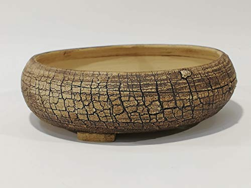 Maceta para Bonsai 18 x 4.5 cm
