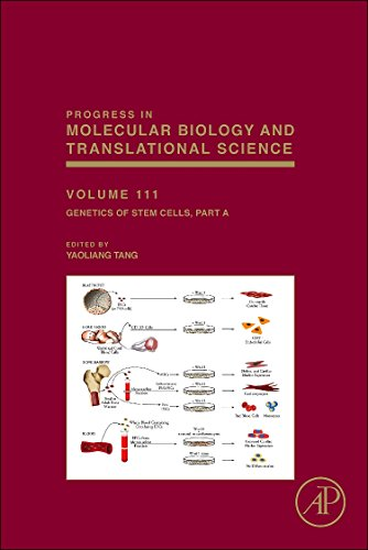 Genetics of Stem Cells: Part A (Volume 111) (Progress in Molecular Biology and Translational Science, Volume 111, Band 111)