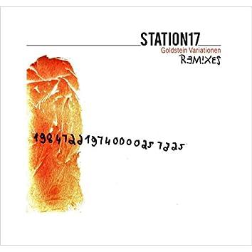 Goldstein Variationen Remixes