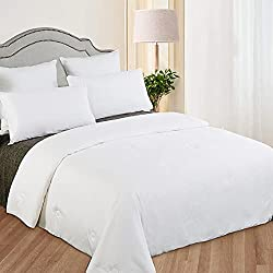 LilySilk All Season Luxury Mulberry Silk Comforter