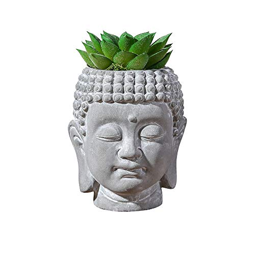 Mini Succulent Plants Artificial Fake Plants Pots Buddha Head Include Plants 4.3 'Home Office Bathroom Decoration